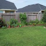 Gardening 2010, Part Three - 101_3628.JPG