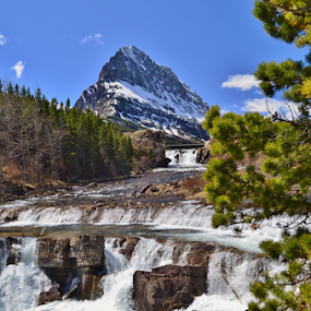 Swift Current Falls by Don Evjen - Landscapes Waterscapes ( forests, pines, mountains, cataracts, glacier park, montana, falls, river,  )