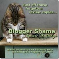 BloggerShame