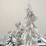 Между снегопадами