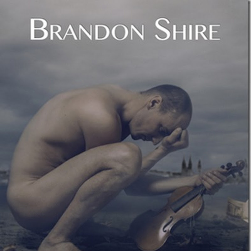 Review : Summer Symphony by Brandon Shire