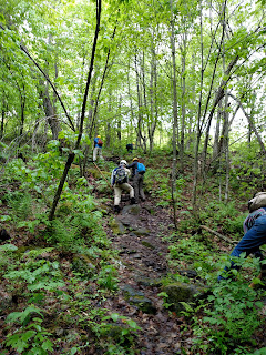 Photos of Trail Work