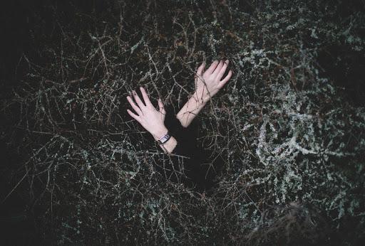 Holding On. Photographer Sarah Kierstead