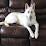 Mahesh Kansagra's profile photo