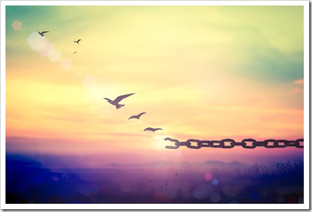 Labor Day concept: Silhouette of bird flying and broken chains at sunset background.