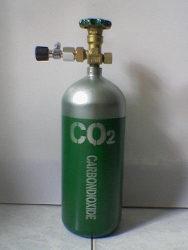 Các trang thiết bị CO2 cho hồ thủy sinh