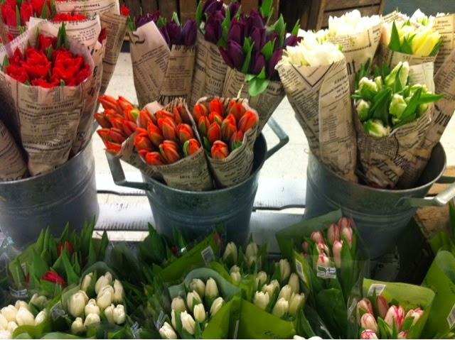 spring, kevät, kesä, kukat, flowers, tulips, tulppaanit,