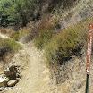 malibu_creek_state_park_img_0798.jpg