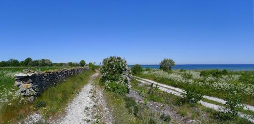 2015-06-09 019_018(Gotland)c.jpg