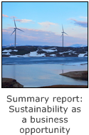 seminar summary report: sustainability as a business opportunity, wind turbine farm in norway