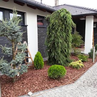 Grădină privată cu iaz