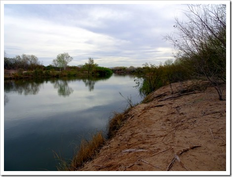 Yuma East Wetland