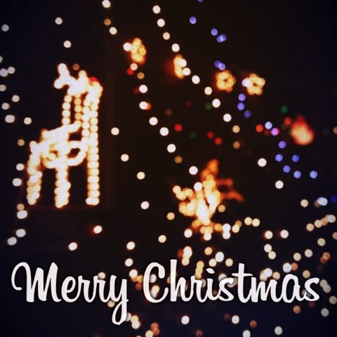 Merry Christmas - Mysweetsourlife.Blogspot.com