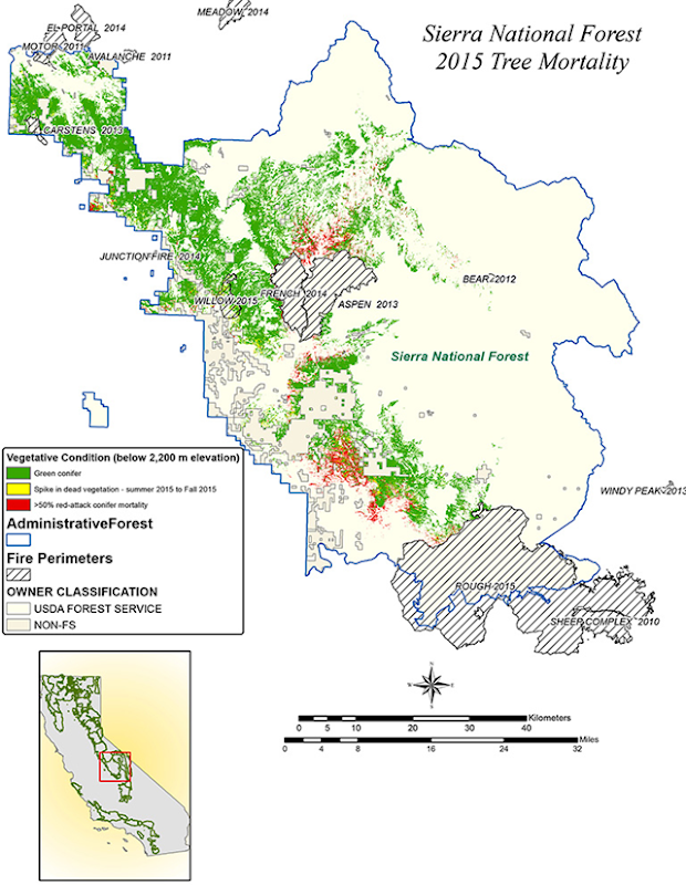NASA AVIRIS data were used to classify the health of trees in California's Sierra National Forest. Green conifers are shown as green, conifers that were dead in summer 2015 are red, and conifers that were potentially dead in fall 2015 are yellow. Graphic: NASA / JPL-Caltech / USDA Forest Service