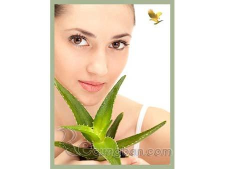 Sữa rửa mặt Aloe Cleanser mã số 339