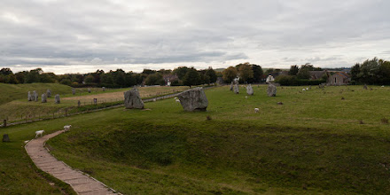 Photo: The Avebury circle is on farmland and there were sheep and cows wandering among the stones