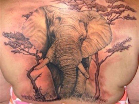 elegante_elefante_africano_em_uma_selva_de_volta_tatuagem