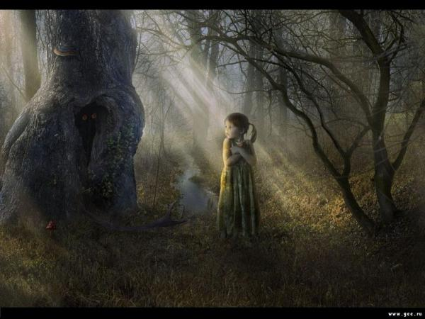 Little Girl In The Dark Forest, Fairies 2