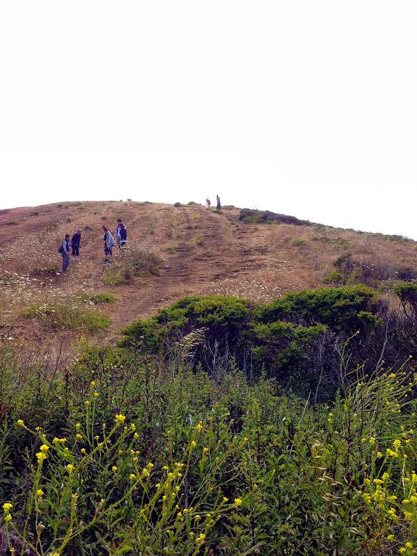 2013-07-20 Hike at Mori Point - IMG_1951.jpg