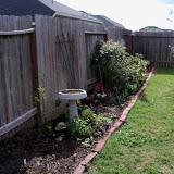 Gardening 2011 - 100_7035.JPG