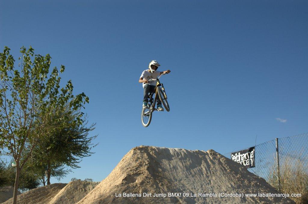 Ballena Dirt Jump BMX 2009 - BMX_09_0073.jpg