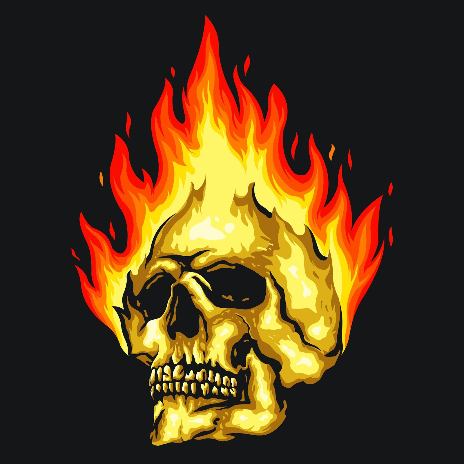 Skull Fire Illustration Free Download Vector CDR, AI, EPS and PNG Formats