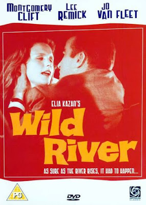 Wild River (1960) BluRay 720p HD Watch Online, Download Full Movie For Free