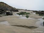 Tidepools at low tide