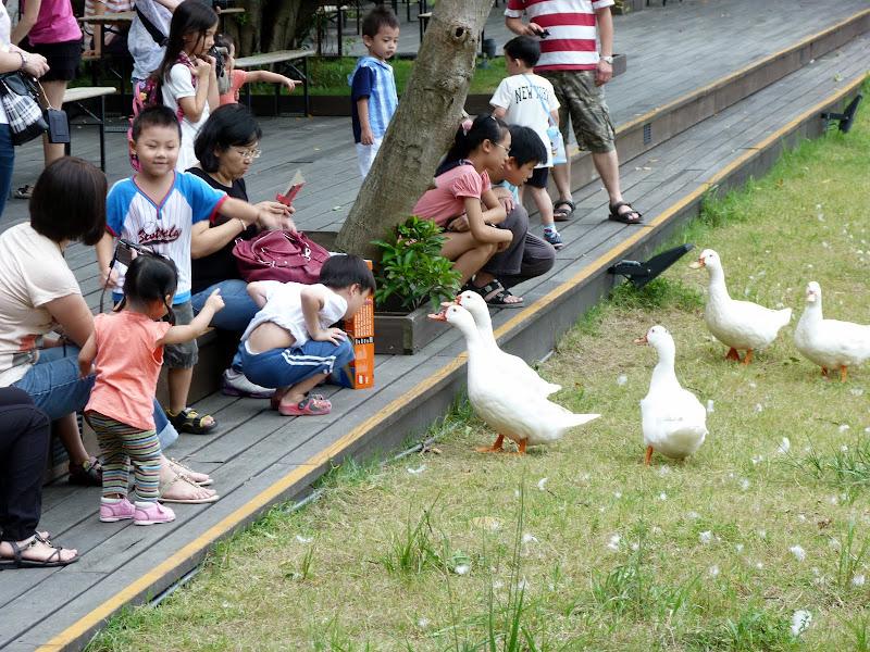 Taipei. Songshan Cultural and Creative Park. Nathan Sawaya. LEGO - P1220960.JPG
