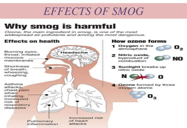 Smog Side effects on health Infographics