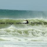 _DSC9607.thumb.jpg