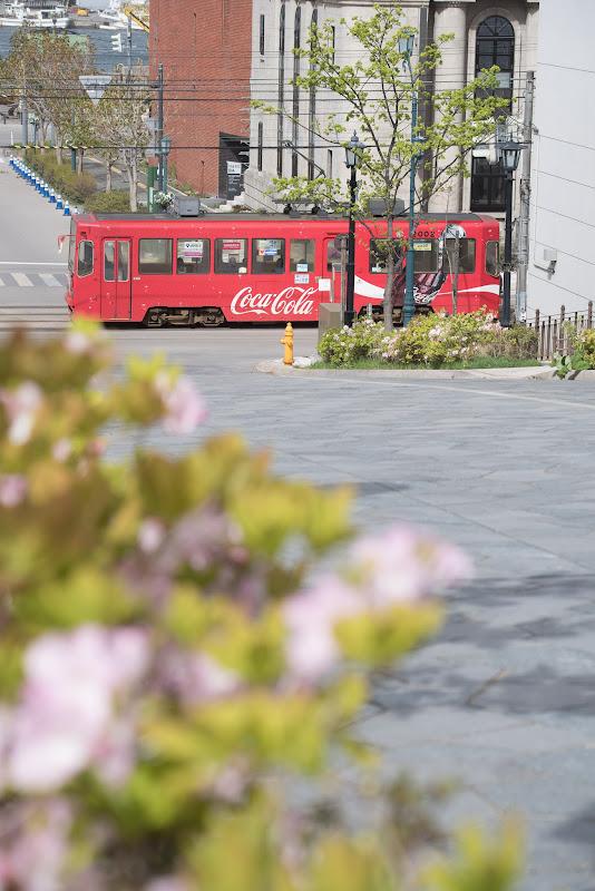 170507 八幡坂下を走る路面電車