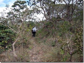 trilha-cachoeira-das-oncas-carrancas-2