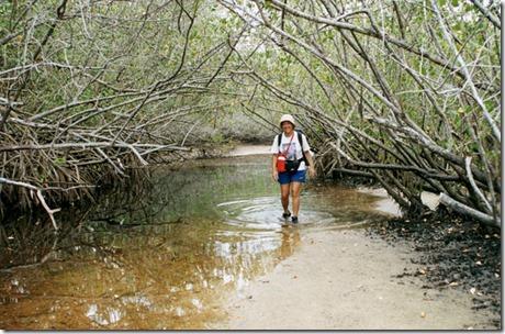 gleidys-no-mangue-branco-ilha-grande