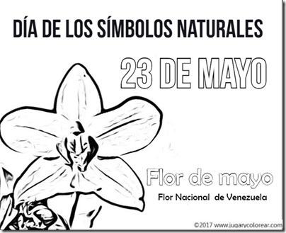 23 mayo venezuela (1)