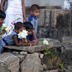 SriLanka_020