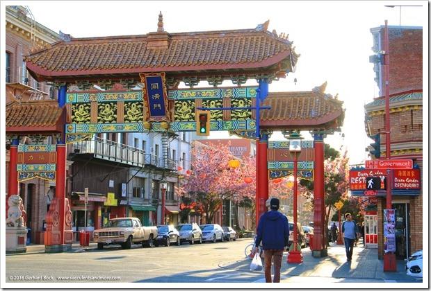 160410_Victoria_Chinatown_0028