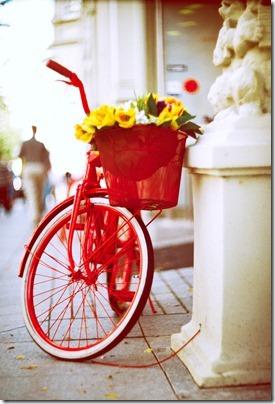 imágenes de bicicletas con flores (10)