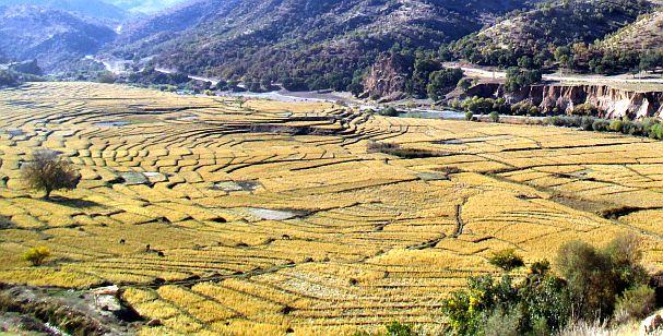 Terassenfelder im Khersaan-Tal