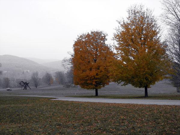 Winter Selections - IMG_9247.jpg