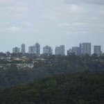 Views from top of Timbergetters to Chatswood (24564)