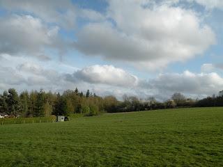 Небо, лес, трава и дом