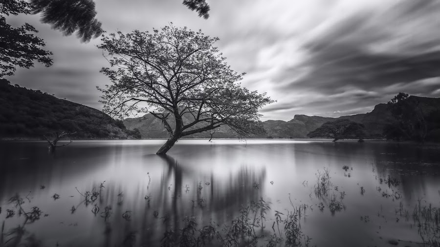 Lone by Box Lyfe - Landscapes Waterscapes ( clouds, water, mountains, reflection, firecrest nd, 16 stops, long exposure )