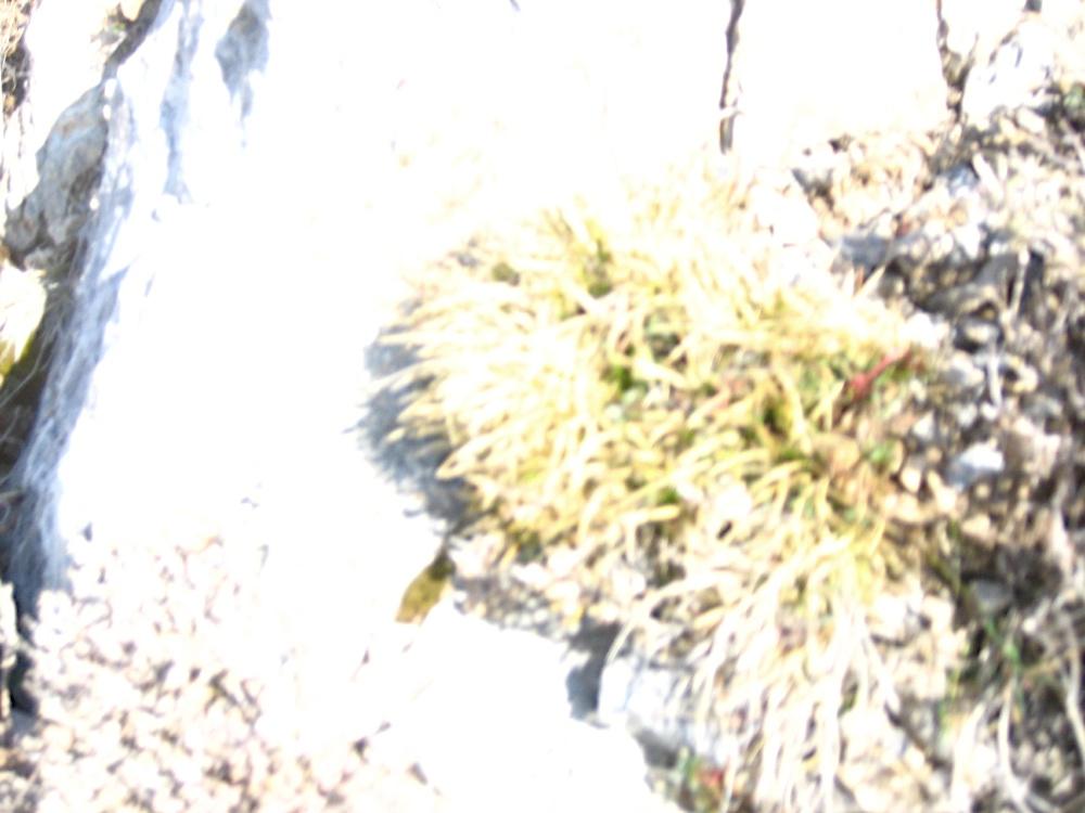 Taga 2006 - IMG_5264.JPG