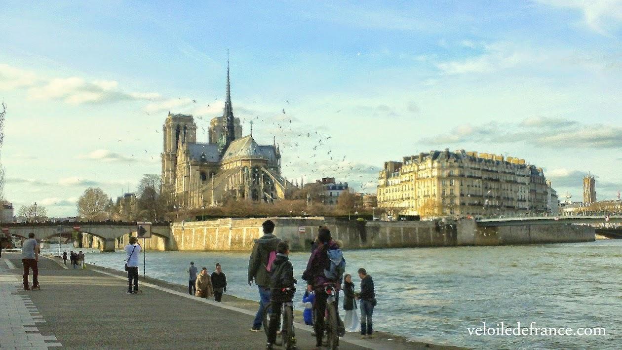 Vue sur Notre Dame depuis les berges de Seine - e-guide balade à vélo de Notre-Dame à Montparnasse par veloiledefrance.com