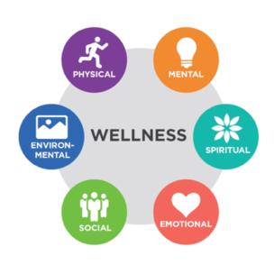 type of wellness