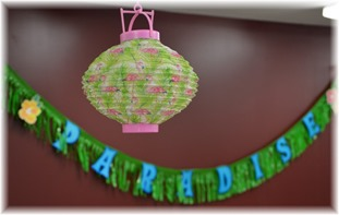 2016-5 SE2 debut and all day crop - flamingo lantern decoration DSC_1441