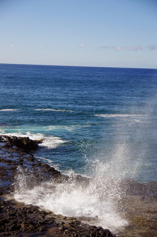 06-27-13 Spouting Horn & Kauai South Shore - IMGP9753.JPG