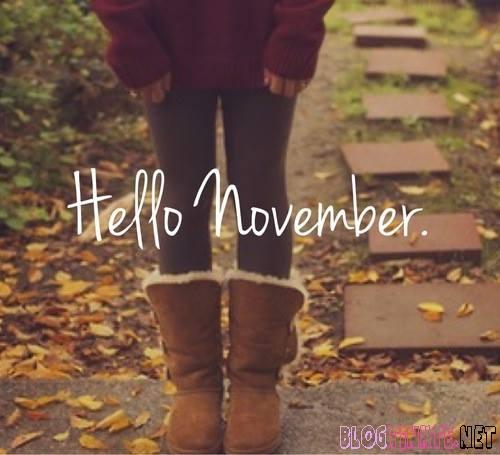 Hình ảnh đẹp chào tháng 11 làm avatar ảnh bìa facebook zalo
