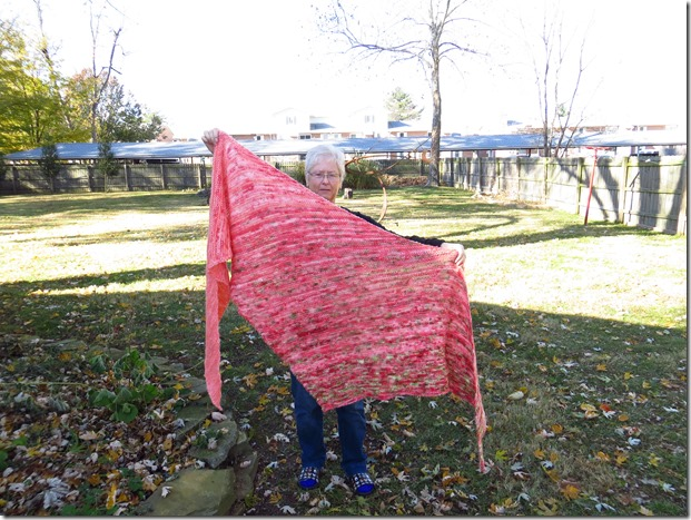 Arlequin Shawl/Scarf (free knitting pattern)